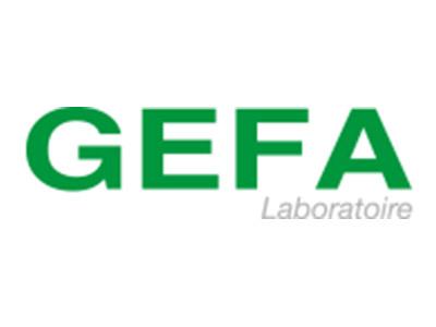 logo-gefa